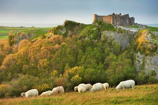 Wales Tours - Brecon Beacons